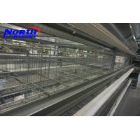 China Trade Assurance 96 chickens poultry cage/Design Layer Chicken Cages/Chicken cage on sale