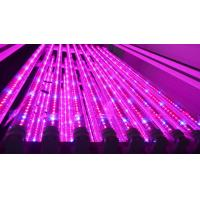 Quality 1200mm Hydroponic Led Grow Light Tube For Vertical Farm , Water Resistance wholesale