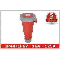 Quality IP67 Industrial Receptacles wholesale