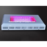 Quality 300w Full Spectrum Led Plant Growing Lights Indoor wholesale