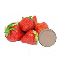 Quality Food Grade Fruit Strawberry Extract Powder For Pharmaceutical Capsules wholesale