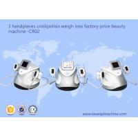 Quality 3 Handpieces Cryolipolysis Slimming Machine Weight Loss Beauty Equipment CR02 wholesale