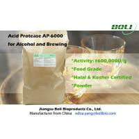 Quality 600000U / g Food Grade Acid Protease , High Efficient Alpha Amylase Brewing For Alcohol wholesale