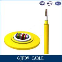 China High Speed Fiber Optic Indoor Cable / GJFDV 48 Core Multimode Optical Cable on sale