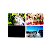 Quality Cartoon PP PET PVC Image 3D Lentiuclar Magnets UV Printing Souvenir wholesale