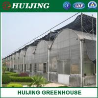 Quality Commercial Multi-Span Poly Tunnel Plastic/Po Film Greenhouse/Green House for Agricultural wholesale