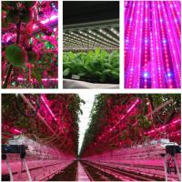 Quality T8 4 Feet Hydroponic Led Grow Lights For Vegetables / Flower , AC85-265V Input wholesale