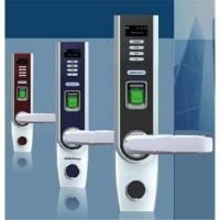Quality Biometric Fingerprint Door Lock with OLED and USB port for data download wholesale