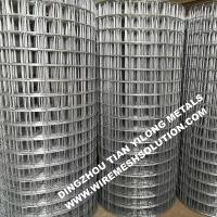 Quality 2 X 2 Galvanized Welded Wire Mesh Sheets Anti - Corrosion For Garden Decorative wholesale