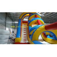 Quality Portable commercial Inflatable Dry Slides , Intex Long Inflatable Water Slide for Kids Playing wholesale
