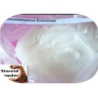 CAS 13425-31-5 Raw Steroid Powder Drostanolone Enanthate For Bodybuilders Cutting Cycles