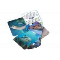 Quality Animial Image 3d Lenticular Sheets Learning card For Children With Alphabet wholesale