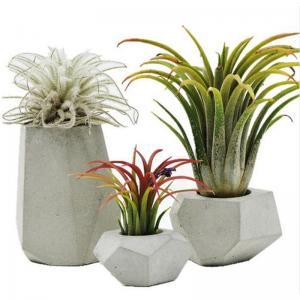 Quality The creative personality of modern mini geometric DIY handmade vase custom concrete cement plant pot silicone mold wholesale