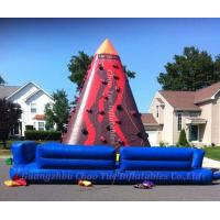 Quality Hot Sale Giant Inflatable Jungle Climbing for Sport Game (CY-M2105) wholesale