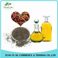 Quality Wholesale Chinese Traditional Herbal Extract Perilla Fretescens Oil Extraction wholesale