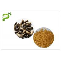 Quality Light Yellow Plant Extract Powder Natural Ingredient Milk Thistle Extraction wholesale