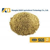 Quality Full Fat Organic Fish Meal Fertilizer / Food Grade Fish Meal Enhance Poultry Nutrition wholesale