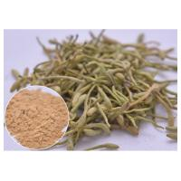Quality treat cold, fever and infection Chlorogenic acid 5%, 25% Lonicera japonica Extract Honeysuckle flower powder wholesale
