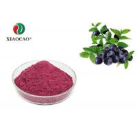 Quality Pure Natural Freeze Dried Powder Spray Dried Blueberry Juice Powder wholesale