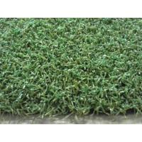 Quality Golf Putting Green Artificial Grass ,Bicolor PE Synthetic Golf Grass wholesale