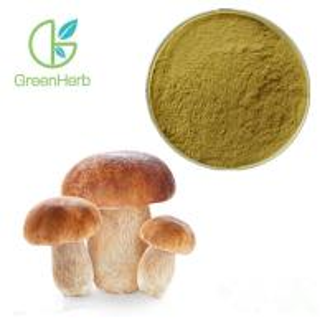 Quality GreenHerb Supply Natural Boletus Edulis Extract Polysaccharide 10%~50% wholesale