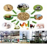 China SS Feed Pellet Production Line Small Poultry Feed Line Simple Structure on sale