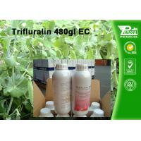 Cheap Weeds And Grass Control Selective Herbicide Trifluralin 480g/L EC Cas No. 1582-09-8 for sale