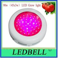 Quality 50w 3000Lm IP50 Led Plant Growing Lights Blue Red Hydoponic Grow Llights wholesale
