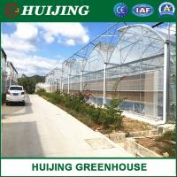 Quality Lower Price Factory Vertical High Tunnel Multi-Span Nursery Film Greenhouse wholesale