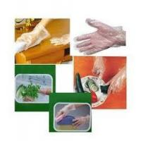 Quality High Quality Disposable Plastic PE Gloves wholesale