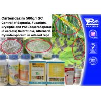 Quality Cas 63090-40-4 Systemic Fungicide For Trees , Carendazim 50% Sc wholesale