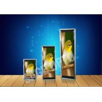 Quality Lightweight P4 Ultra Thin LED Displays Advertisement , HD Video Wall wholesale