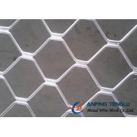 Quality Beautiful Grid Mesh for Protection, Firm Structure & Corrosion Resistance wholesale