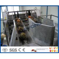 Quality Fully Automatic PLC Control Pineapple Processing Line For Fruit Juice Processing Machines wholesale
