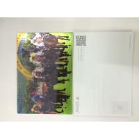 Quality 0.6MM PET 3D Lenticular Postcards / 3d animation picture With CMYK Printing wholesale