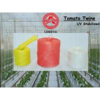 Quality 1mm 1.5mm Colorful Polypropylene Twine For Tomato Tying / Poly Twine Rope wholesale