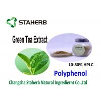 China Nature Antioxidant Food Supplements Organic Green Tea Extract 20 - 98% Purity on sale