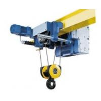 China electric pulley hoist on sale
