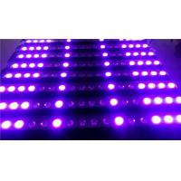 Quality Super Bright LED Wall Washer Light Ultraviolet Light 200W  For Landscape / Garden wholesale