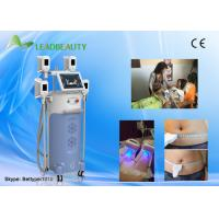 Quality Factory price cryolipolysis fat removal machine with two handls can work at the same time wholesale