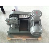 Quality Gas Station Use Hand Held Vacuum Pump LPGP-2000 With Innovative Cam Design wholesale
