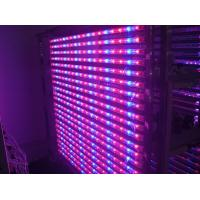 Quality 14 Watt Hydroponic LED Tube Grow Lights Blue / Red Light Source , Dia26*900mm wholesale