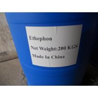 Quality Ethephon 24%SL, 40% SL, 48% SL ,72%SL Plant Growth Regulator wholesale