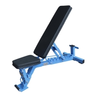 Quality Blue Tube Full Gym Equipment Adjustable Weight Dumbbell Workout Bench wholesale