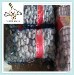 Quality new high quality Best vegetable fresh garlic natural garlic wholesale