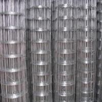 China 1x1 galvanized welded wire mesh 1/2 inch plastic coated welded wire mesh on sale