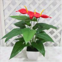 China Real touch artificial flower anthurium plant on sale