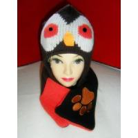 China 100% Acrylic Knitted Scarf & Hat (CR-TLCA00016) on sale