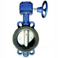 China DN100,PN10 wafter type Plastic butterfly valve with worm gearbox on sale