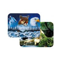 Quality Waterproof Plastice 3D Lenticular Placemats Directly Printing PET wholesale